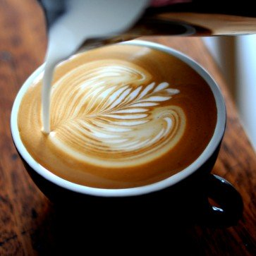 Coffee Tour Of Chicago | Seattle Tours | Best Tours